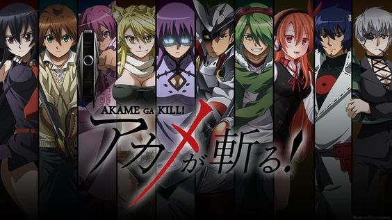 Night Raid Members Akame Tatsumi Mine Leone Sheele Bulat Lubbock