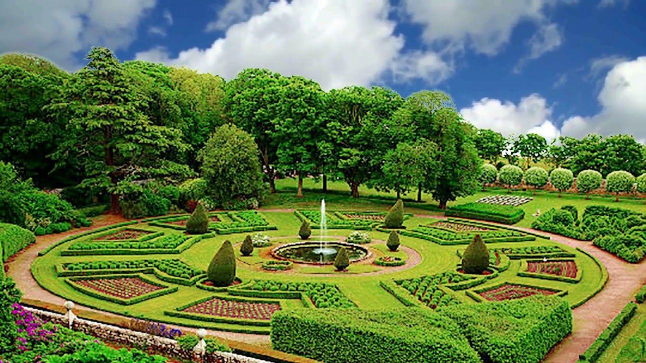 Very Nice Landscape, Tree Garden, Background Video, 1080p