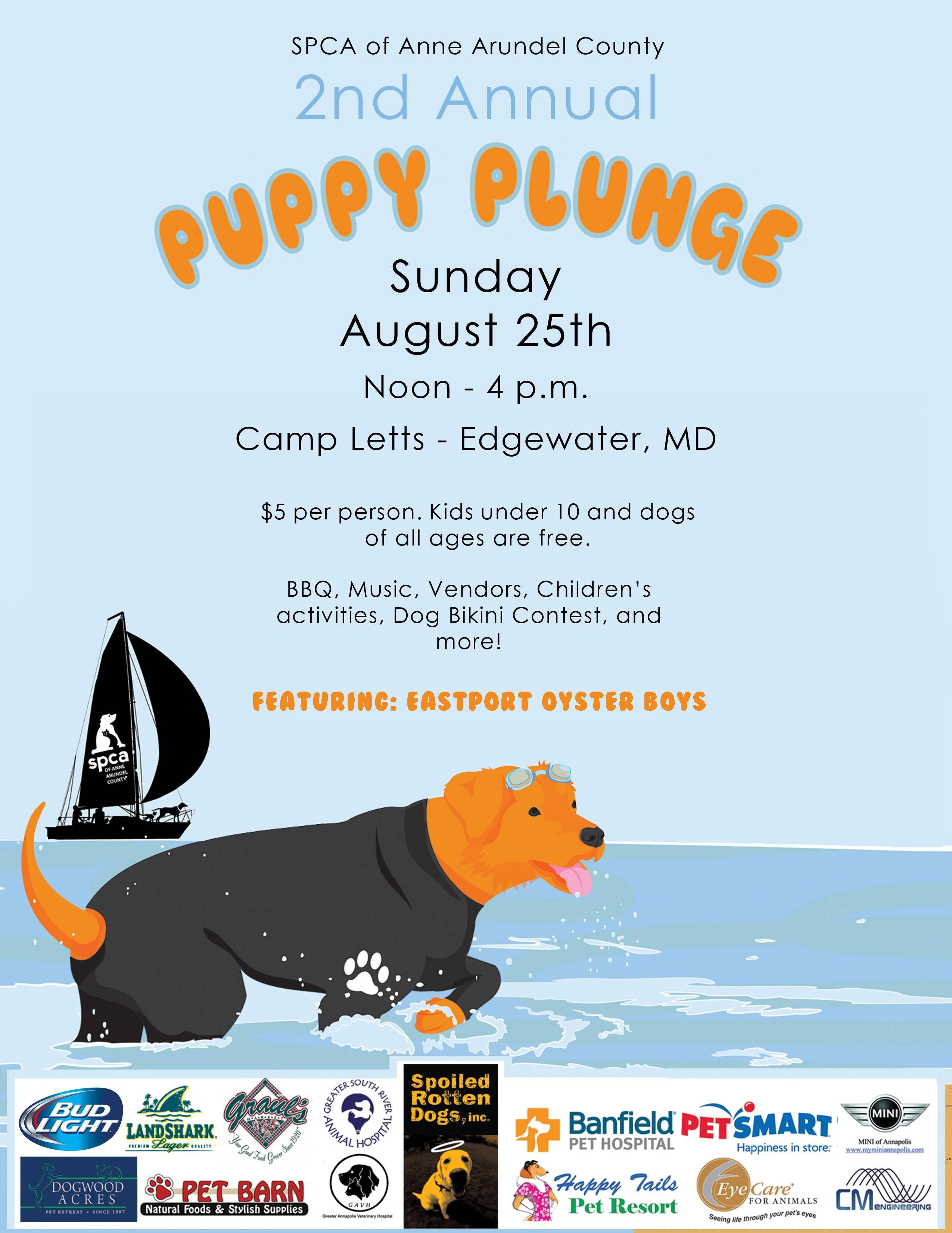 Join Us Sunday 8 25 For The 2013 Puppy Plunge Puppies Childrens Activities Bikini Contest