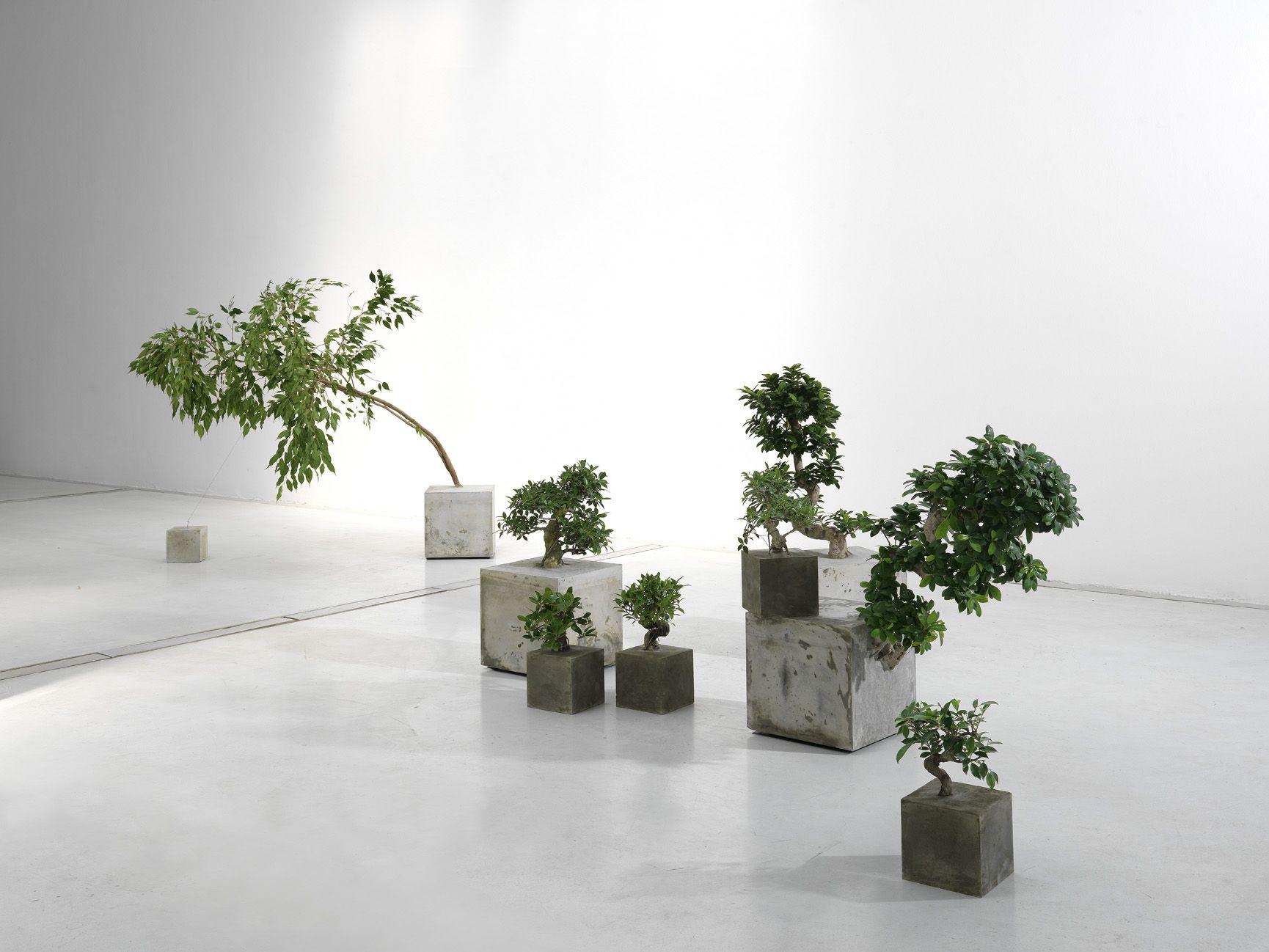 Andre Woodward, installation view, 2014. Courtesy Studio la Città e l'artista. Foto Michele Alberto Sereni.