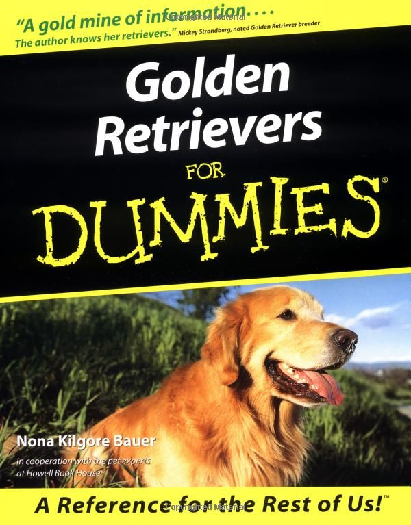 Golden Retrievers For Dummies Amazon Ca Nona Kilgore Bauer