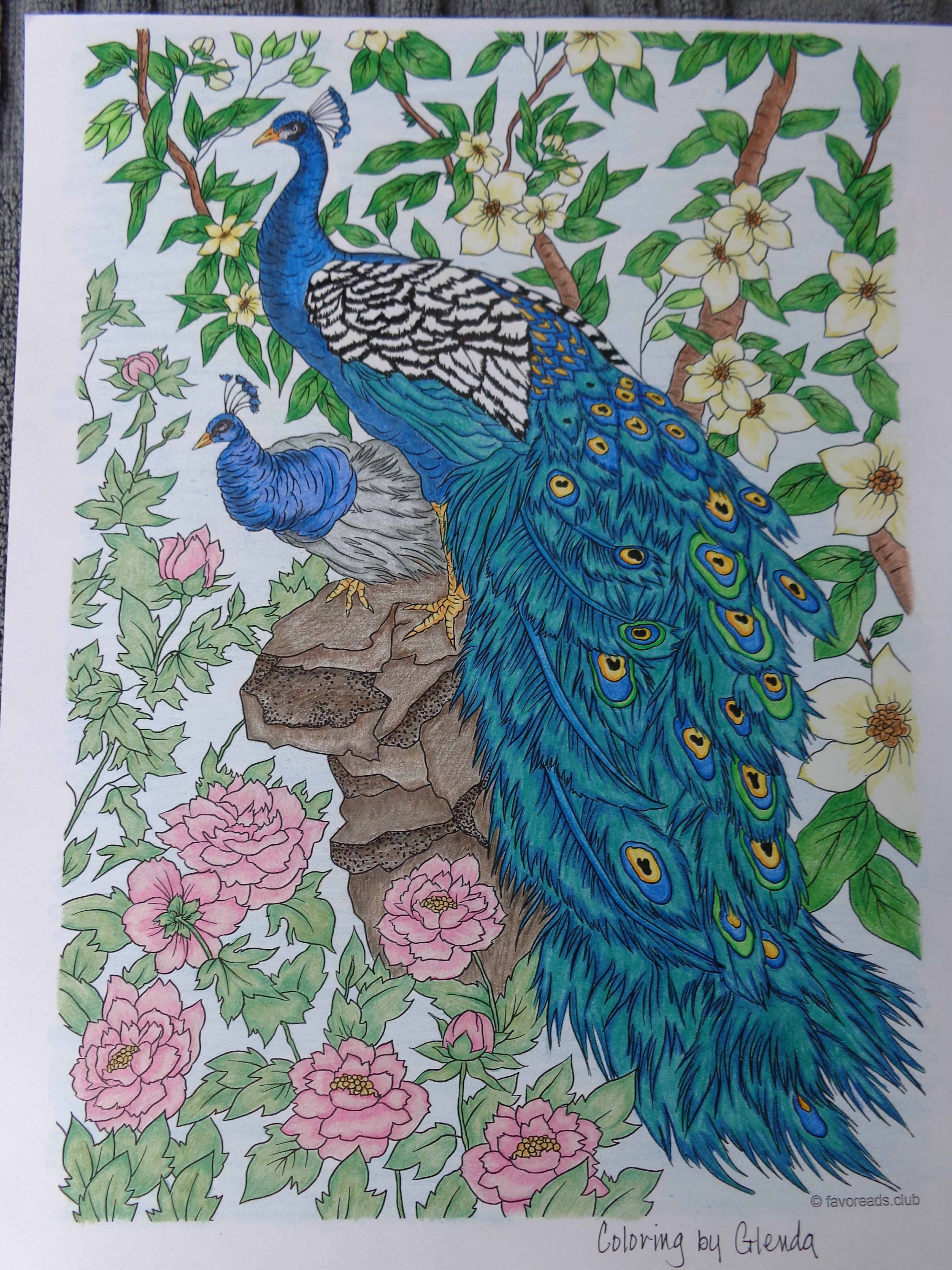 Stunning Peacocks Colored By Glenda Works Click On The Image To See The Original Coloring Design Peacock Painting Drawings Nature Art