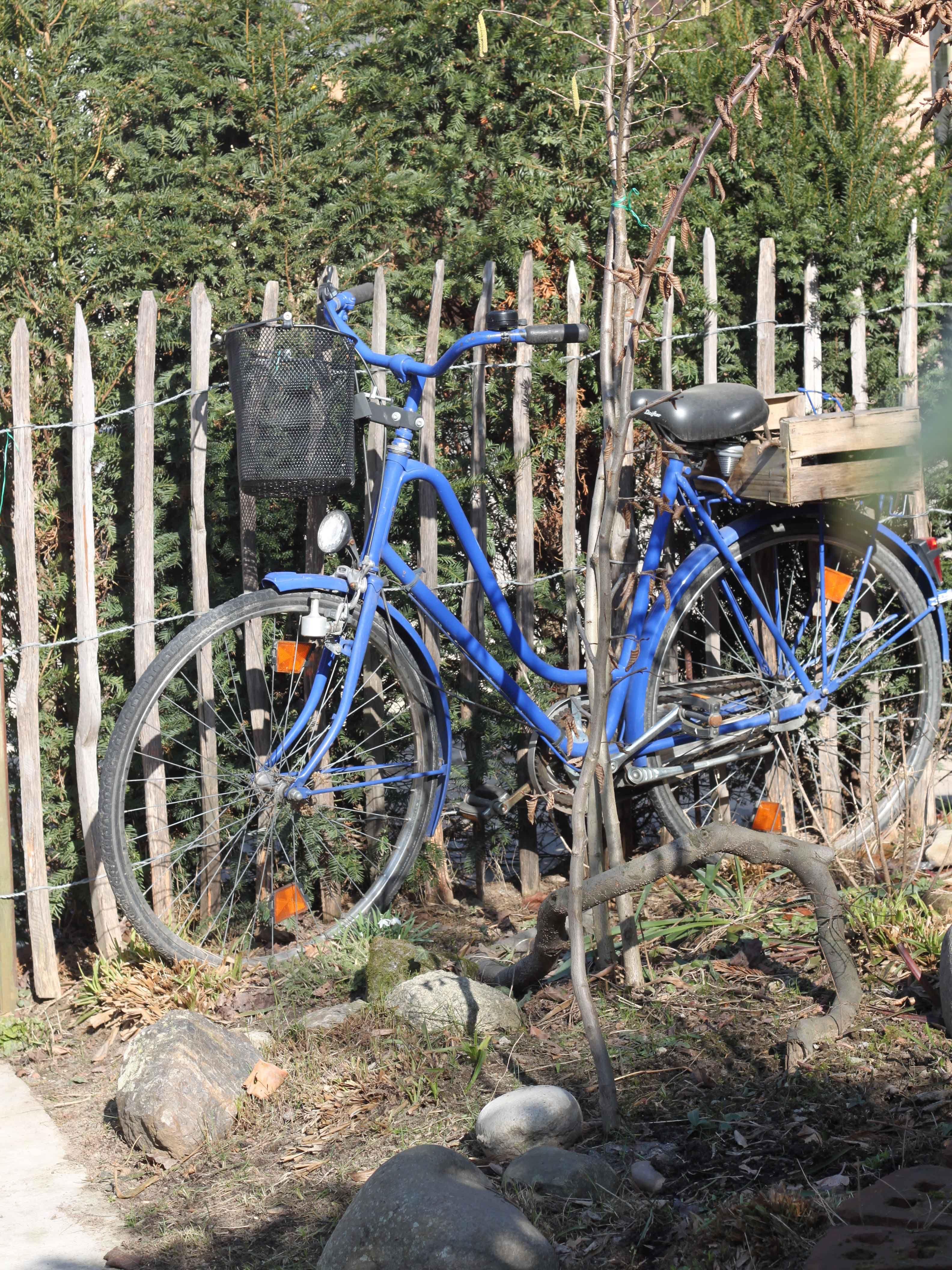 Ein Altes Fahrrad Im Garten Von Mariles Tante