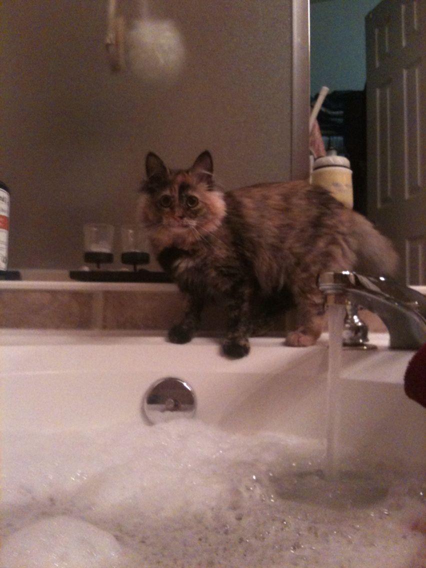 Love bubble baths