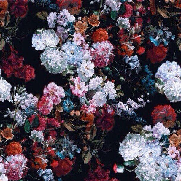핸드폰 배경화면 / 초고화질 다운로드 8 #sky #flower #wallpaper #travel #iphone #background
