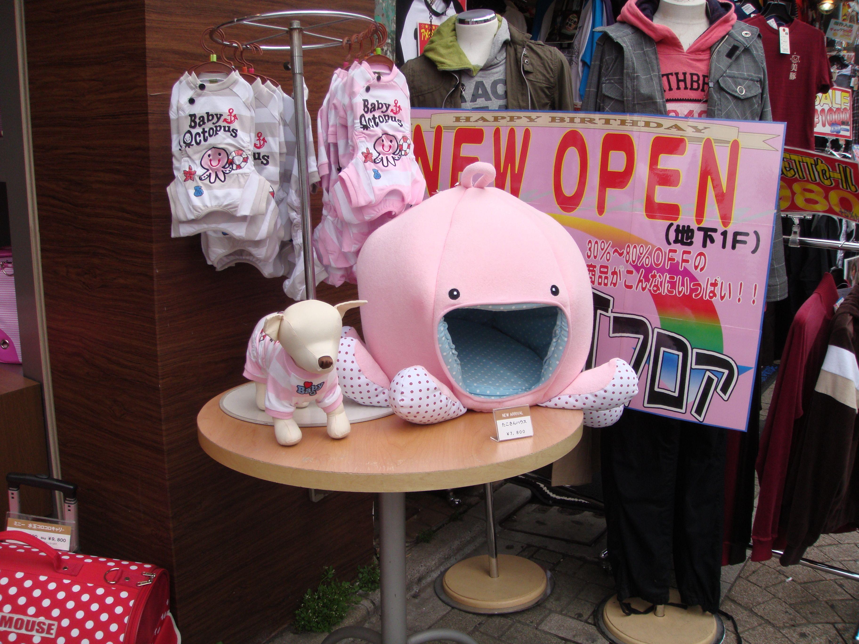 Pet Store Shinjuku Tokyo Pet Store Pets Home Decor