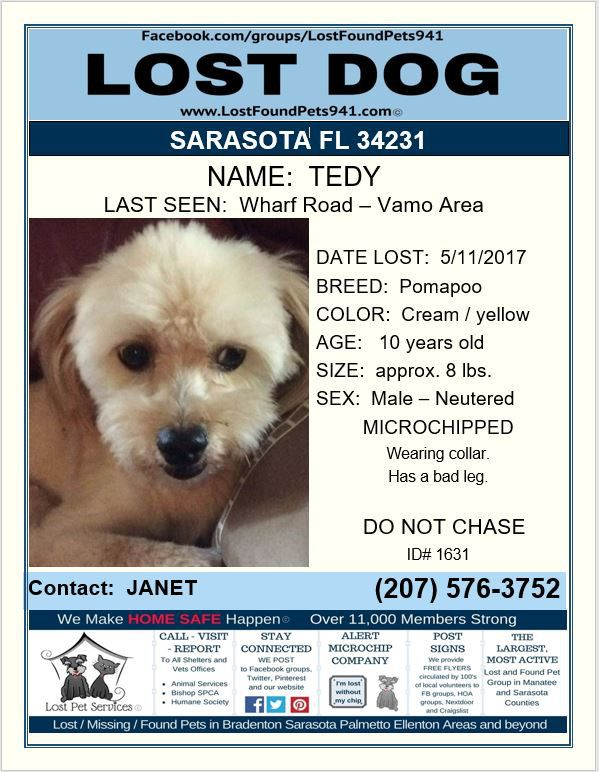 Have You Seen Tedy Losing A Dog Losing A Pet Service Animal