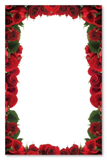 Kentucky Derby Rose Border Red Roses