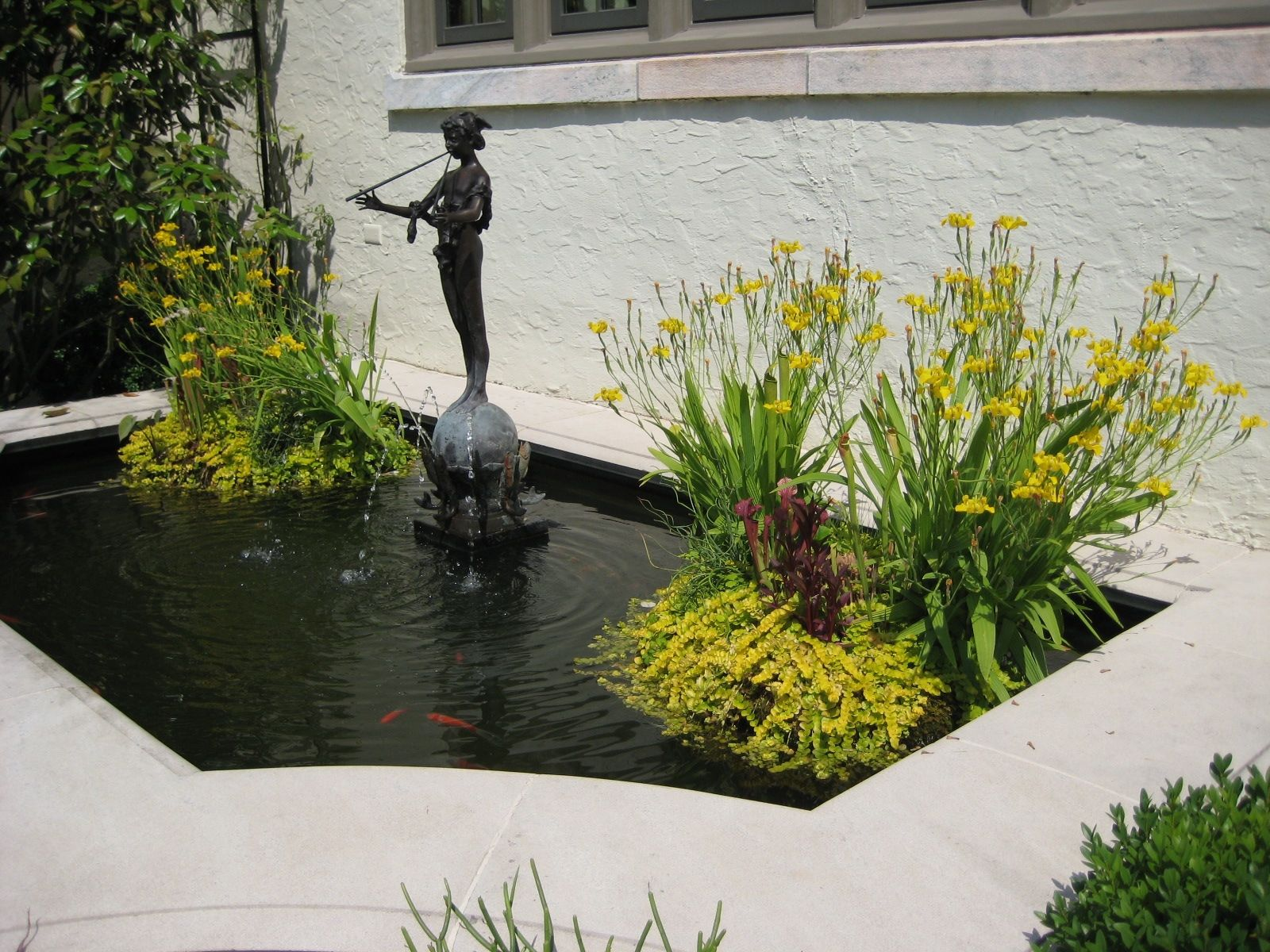 Small Formal Pond  Photographed By Heather Moll Dunn Landscape And