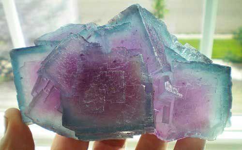 Fluorite: 13.3 cm, from the Fish-Stick Pocket, Bingham mine, Socorro County, New Mexico