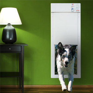 Best Electronic Dog Doors Pet Door Best Dog Door Your Dog