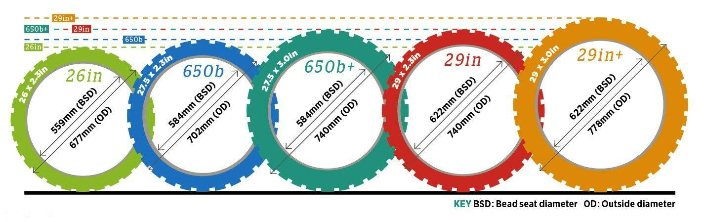 Size Comparison Of Mtb Wheelsizes Mountain Bike Wheels Bike