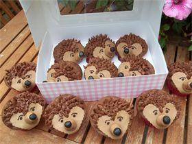Hedgehog Cake Recipe Chocolate Buttons