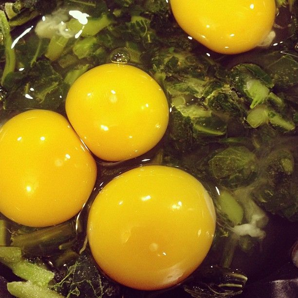Are those pastured egg yolks not gorgeous?! Especially on top of the glorious greens? :)