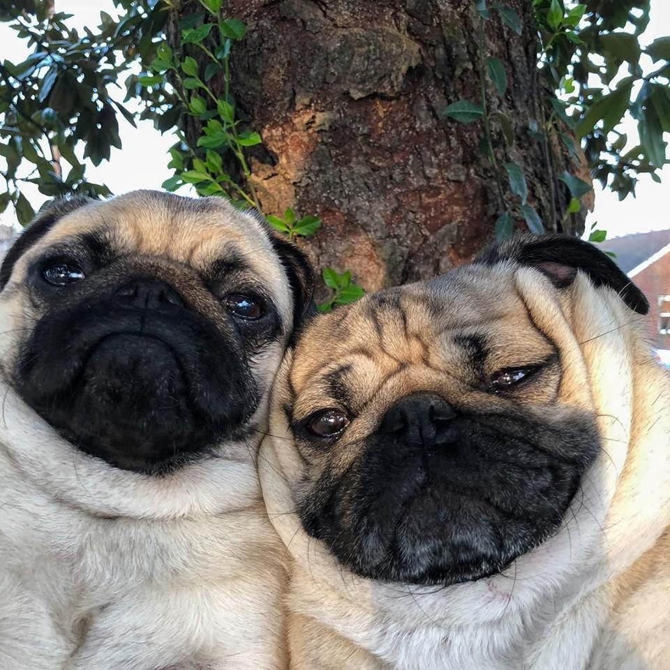 We All Have That One Friend Who Won T Stop Taking Selfies