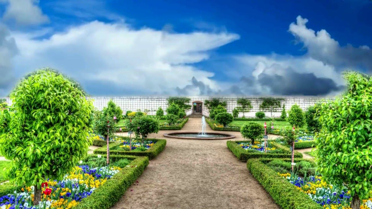 Flower Garden, Background Video, Awesome Motion
