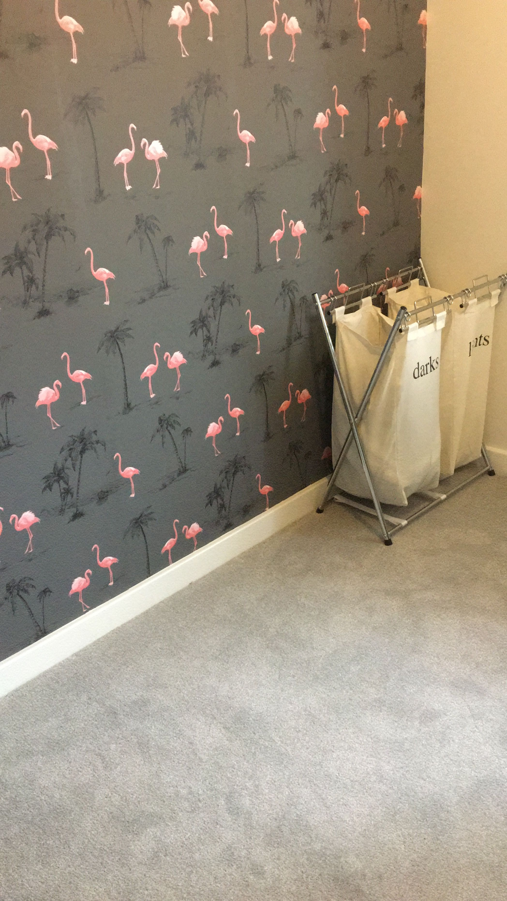 B Q Flamingo Wallpaper Flamingo Wallpaper Flamingo Wallpaper Bedroom Wallpaper Bedroom