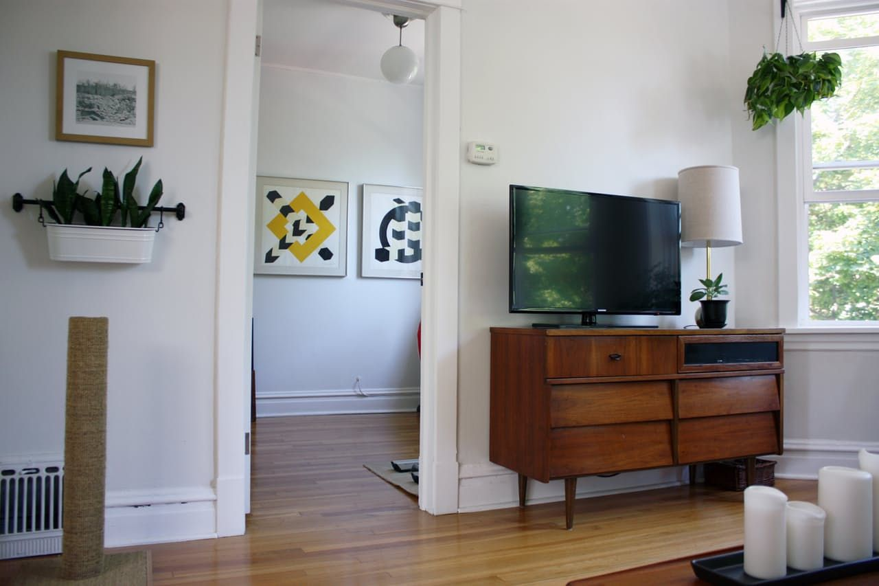 Plants in hanging planter- wall -and- credenza with upgraded drawer  Marti & Jarrod's Graphic Modern Home