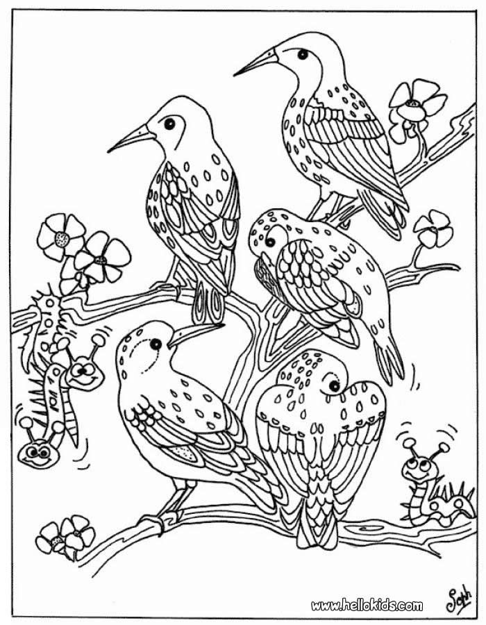 Birds Coloring Page Happy Family Art Bird Coloring Pages Cool Coloring Pages Tree Coloring Page