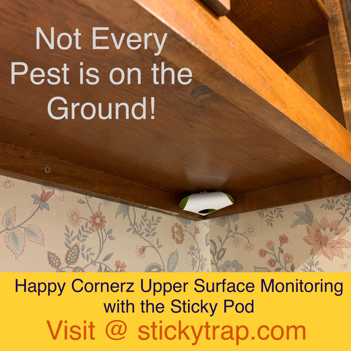 DIY Upper Surface Monitoring for Roaches, Ants, Spiders