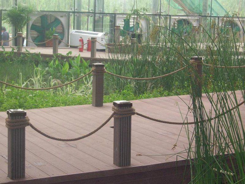 Senderos puentes caminos sobre agua lagos lagunas lluvia for Charcas de jardin