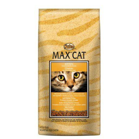 Pets Kitten Food Dry Cat Food Roast Chicken Flavours