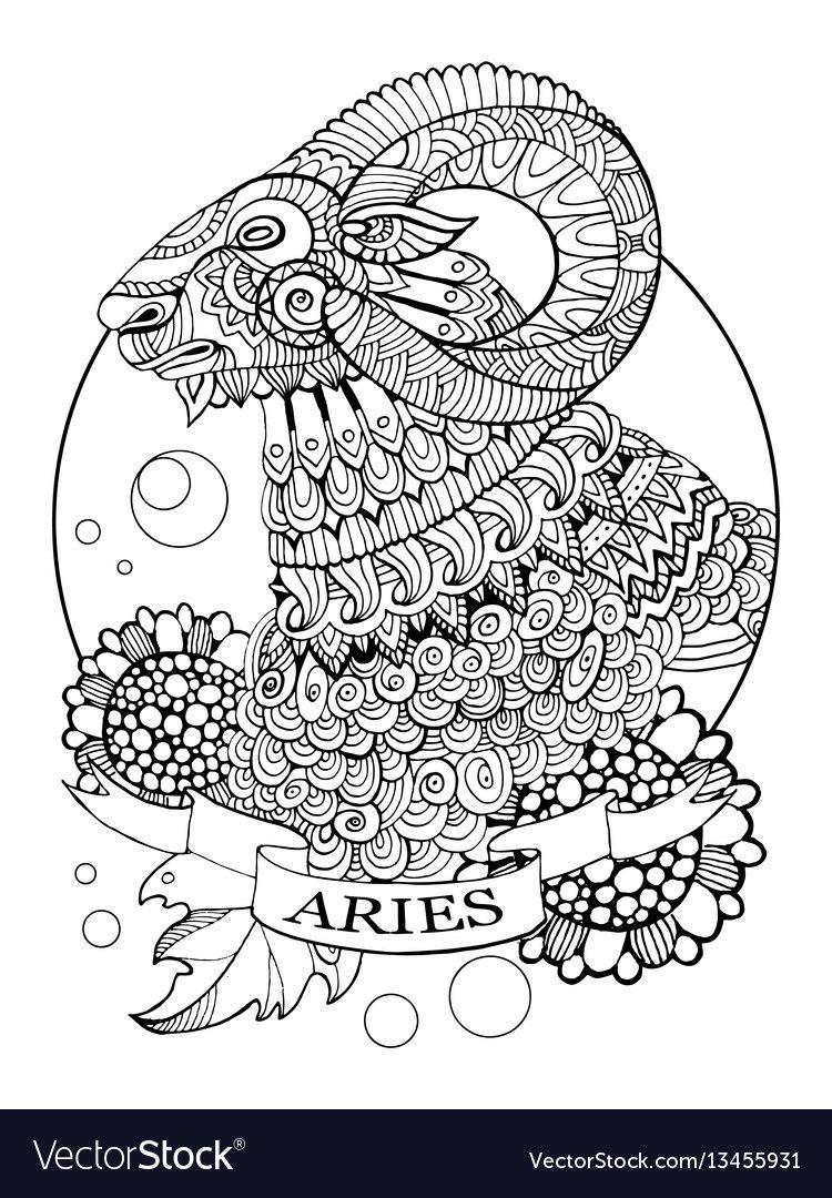Aries zodiac sign coloring book vector image on | Zodiac ...