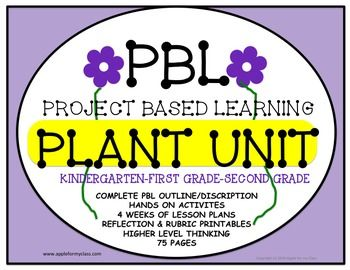 This Pbl Unit Includes The Planningdescription Phase Full Lesson