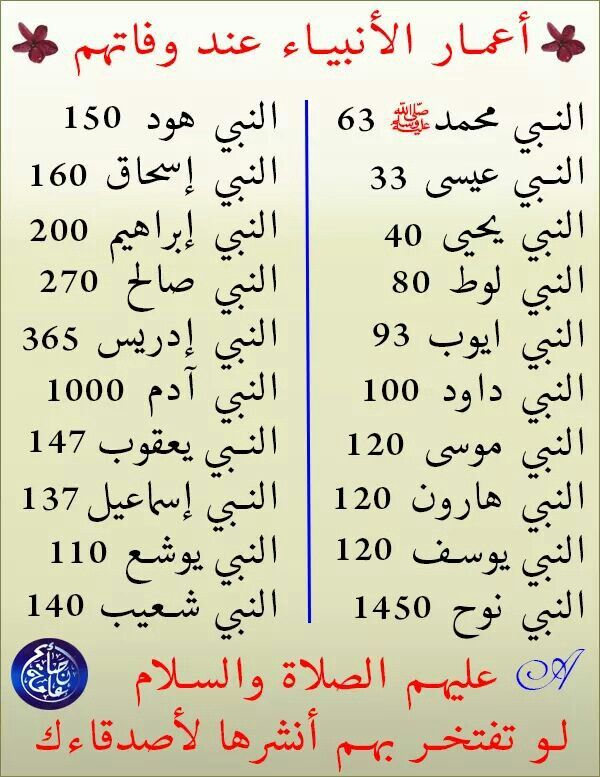 El Islam Islam Facts Learn Islam Islam Beliefs