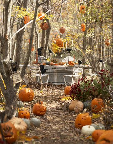Pumpkin Path Party ideas Pinterest Halloween parties, Outdoor