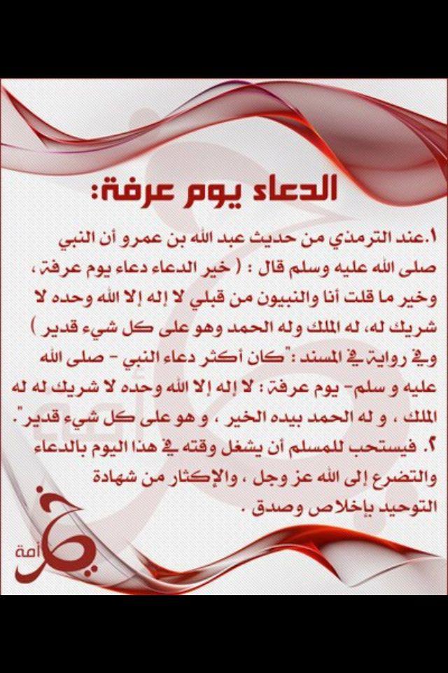 Pin By Randa Kaddah On Islamic Islam Quran Islam Words