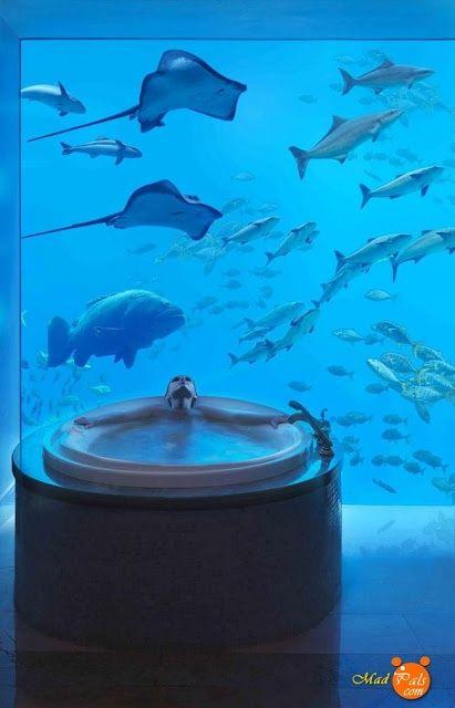 Water Discus Hotel, Dubai, United Arab Emirates (10 Pics) WOULD LOVE TO GO HERE!!!! #dubai #uae
