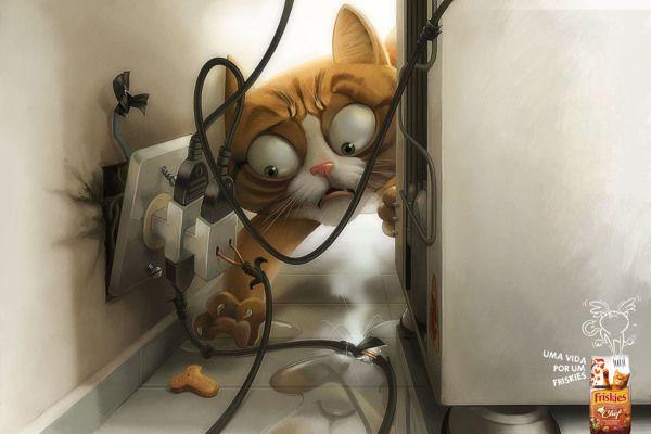 O Dia Cats on Behance