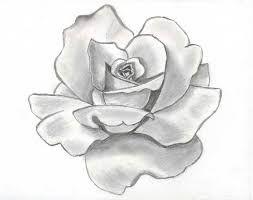 Resultado De Imagen Para Rosa Flor Tumblr Dibujo Portadas En 2018
