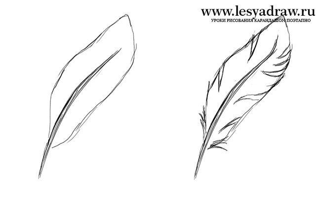 Урок рисования маки цветы
