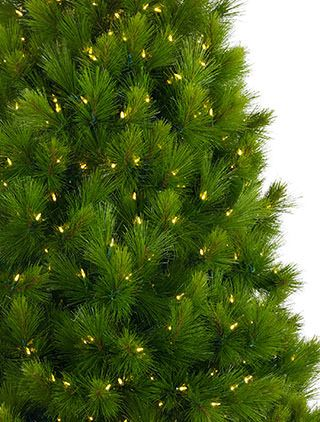 Monterey Pine Artificial Christmas Tree | Balsam Hill Australia ...
