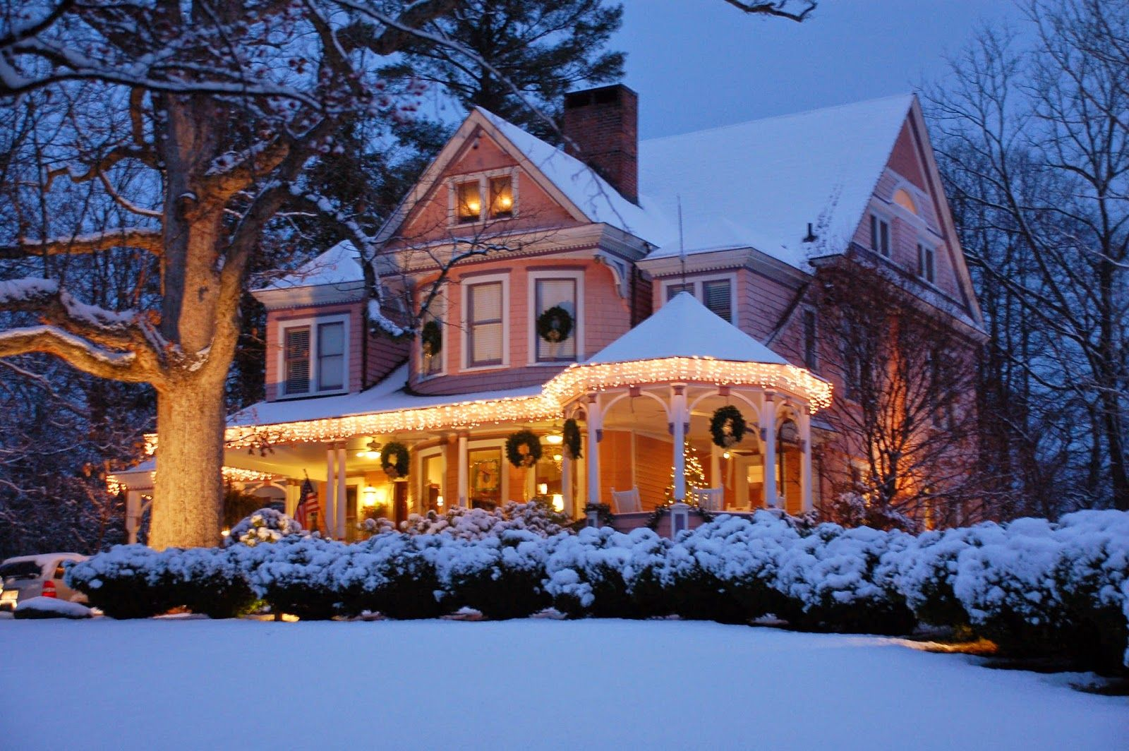 Asheville Christmas Cats and Cozy Inns in N.C. Asheville