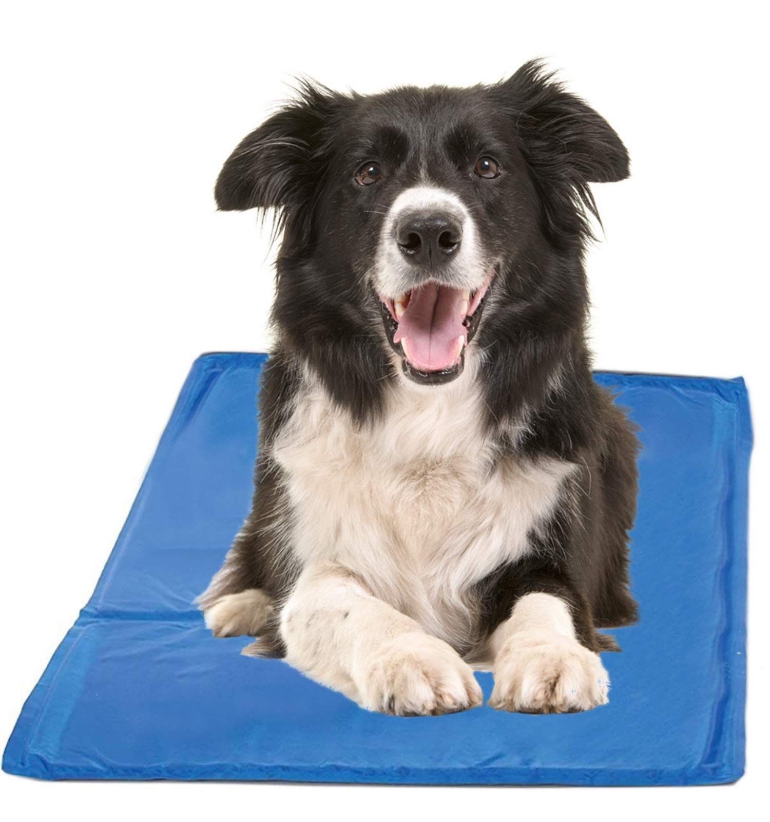 Chillz Cooling Mat For Dogs Pressure Activated Gel Dog