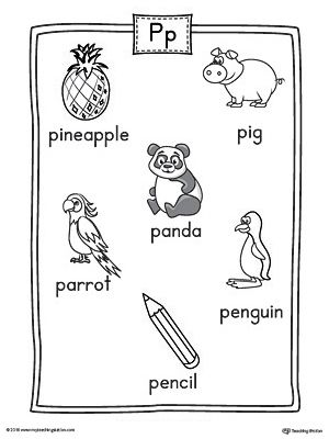 Letter P Word List with Illustrations Printable Poster