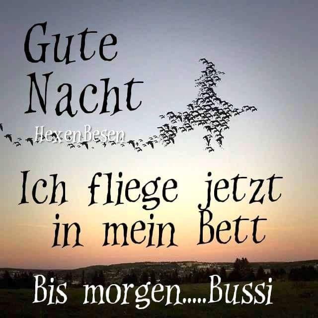 Pin Von Birgit Bauer Auf Lustig Mit Bildern Gute Nacht Spruche
