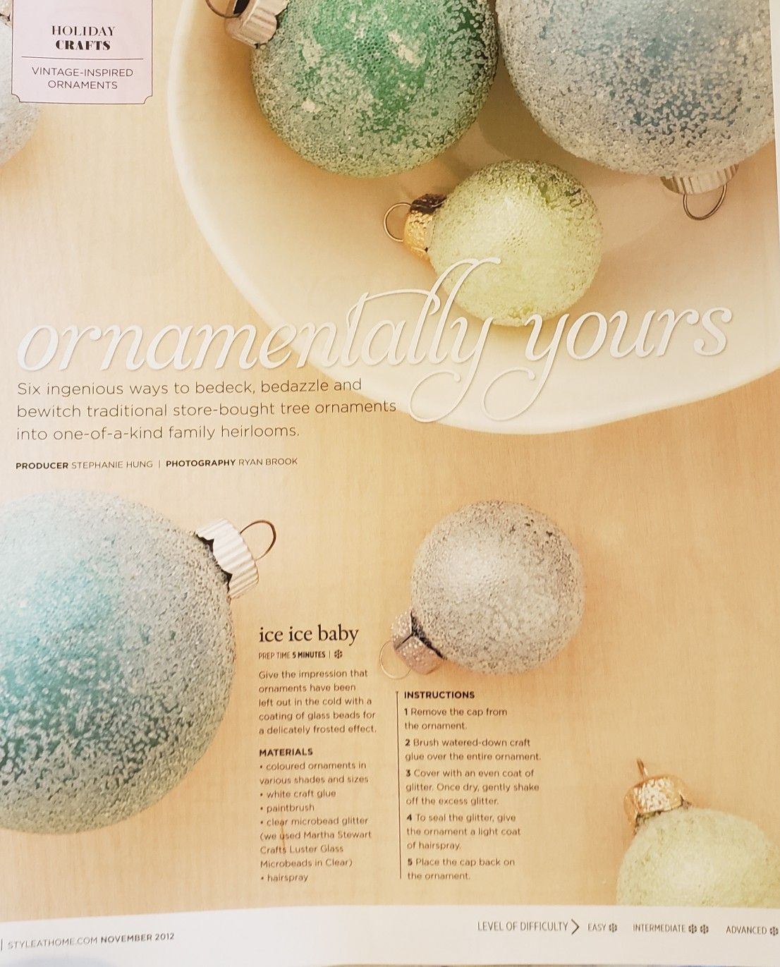Pin By Zandra Innis On Christmas Diy In 2020 Christmas Diy Fruit Christmas