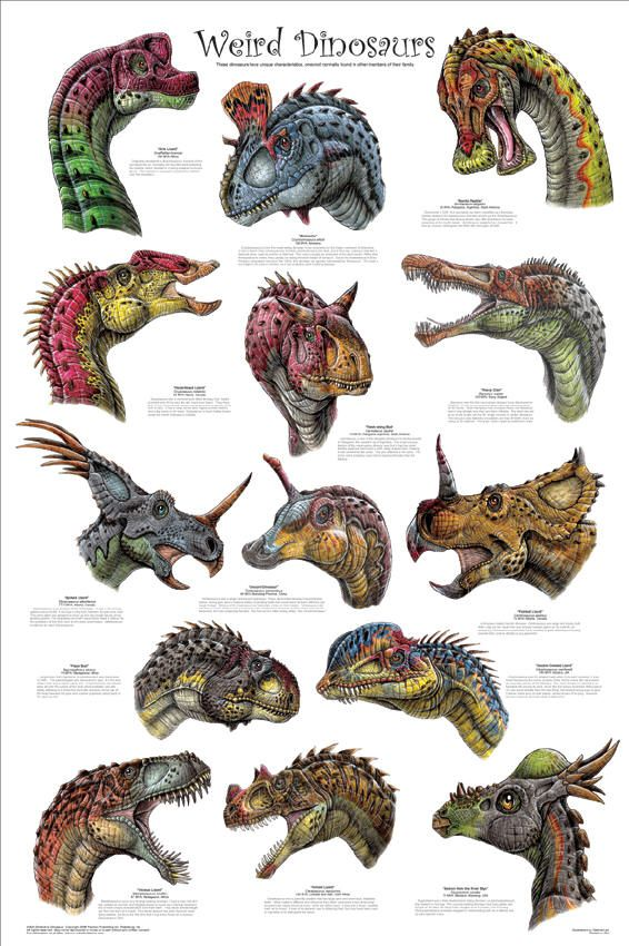 More dinosaurs! #prehistoriccreatures