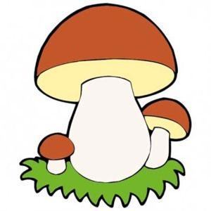 Детям о грибах – грибные картинки и рассказы | Рисунки грибов ...