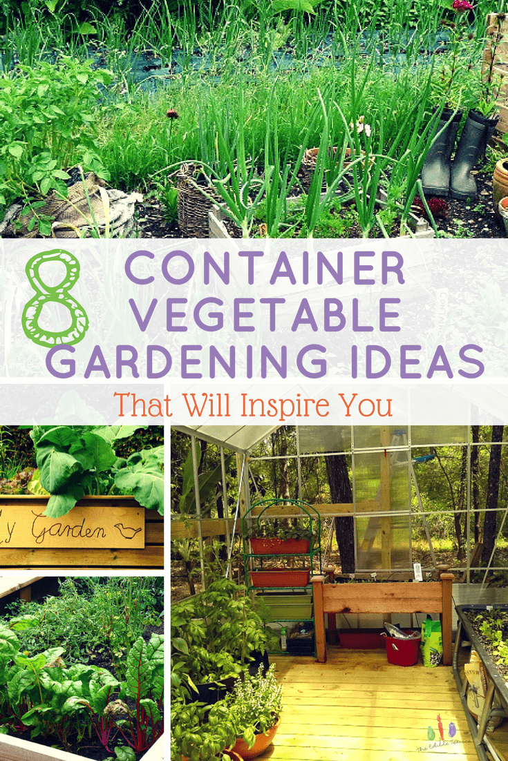 Easy Steps To Growing Vegetables In A Small Space Container Gardening Vegetables Small Vegetable Gardens Small Space Gardening