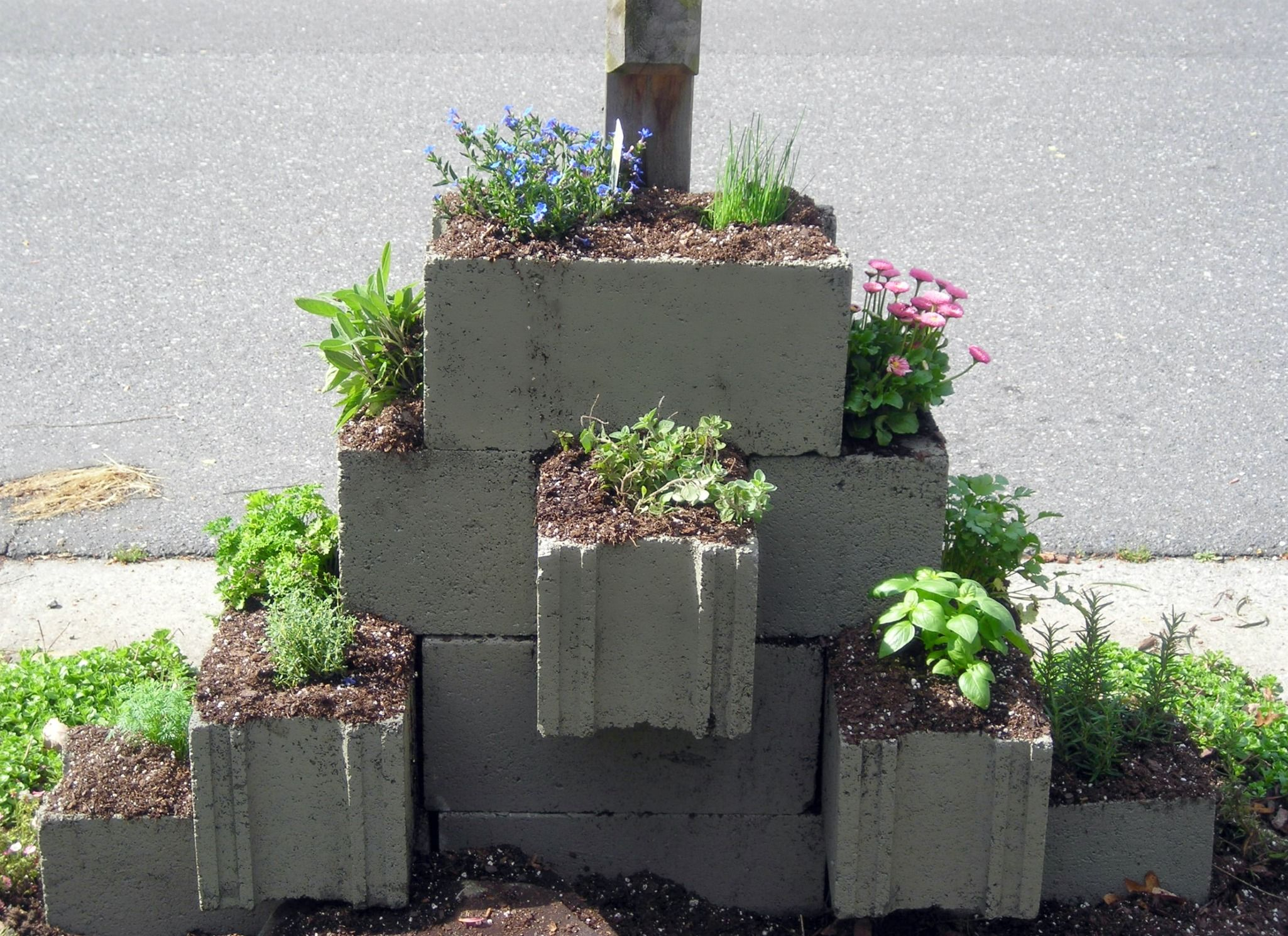 Cinder Block Herb Garden By The Mail Box, The Only