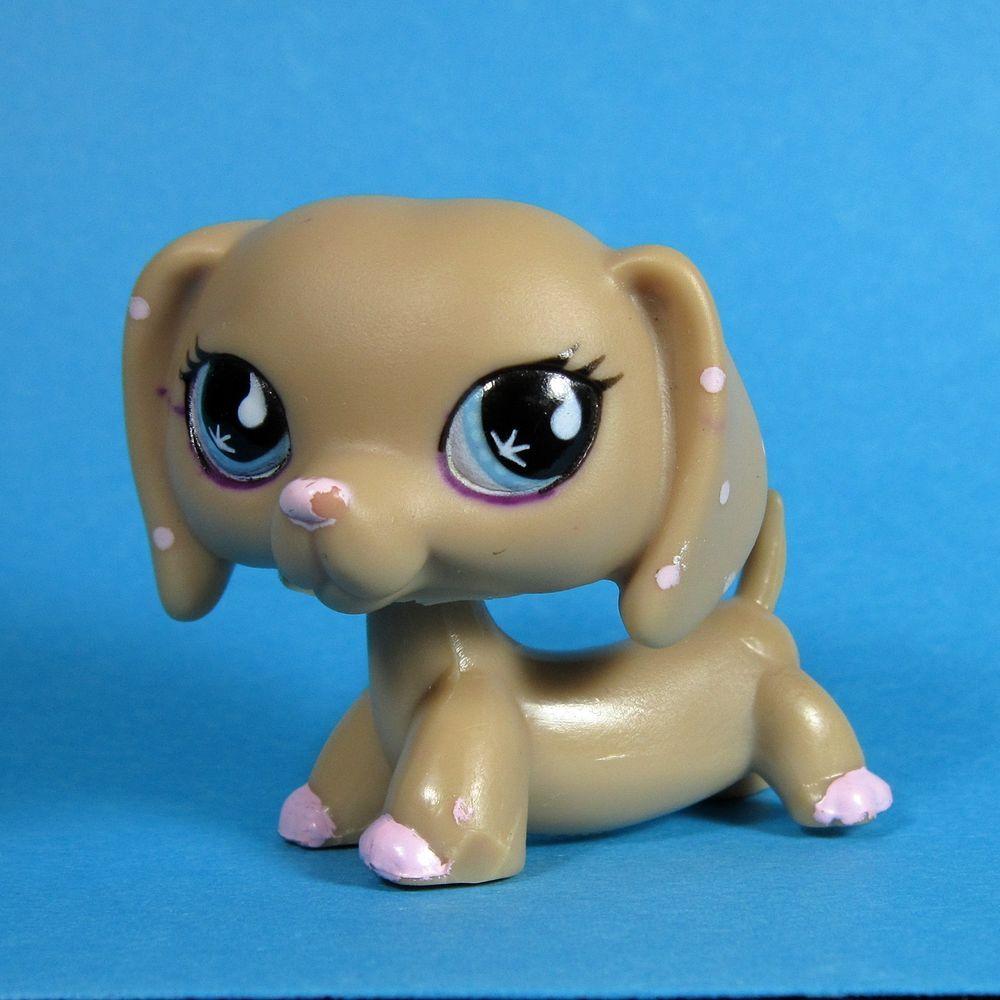 Littlest Pet Shop Authentic Vhtf 1631 Dachshund Creme 2626 Baby Petriplet Ebay Lps Pets Little Pets Lps Littlest Pet Shop