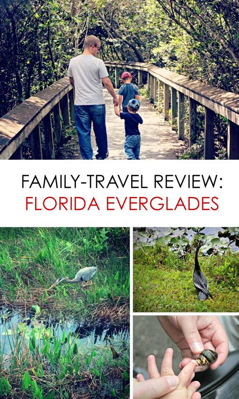 Florida Everglades More Than Just A Swamp Everglades Florida Everglades Florida Vacation
