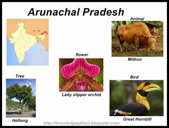 INDIA - STATE SYMBOLS OF ARUNACHAL PRADESH   State symbols ...