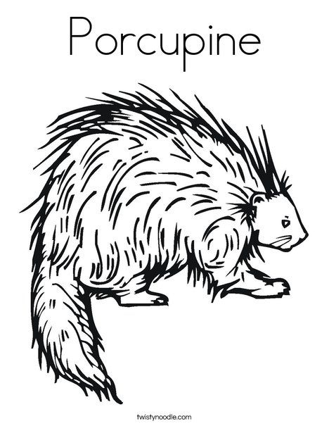 porcupine coloring pages Porcupine Coloring Page from TwistyNoodle.| letter Pp  porcupine coloring pages