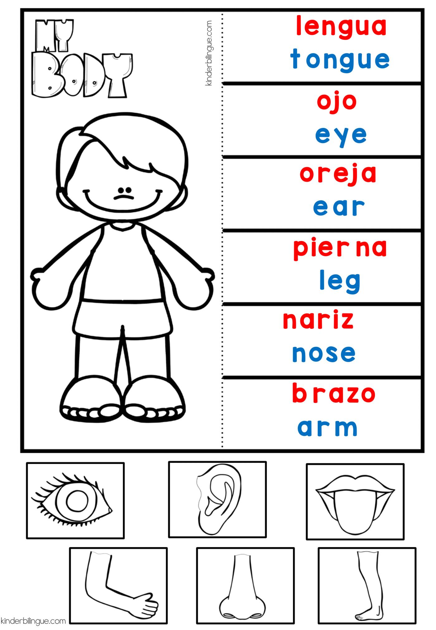 Frases Para Ir Al Doctor En Ingles Phrases In Spanish To
